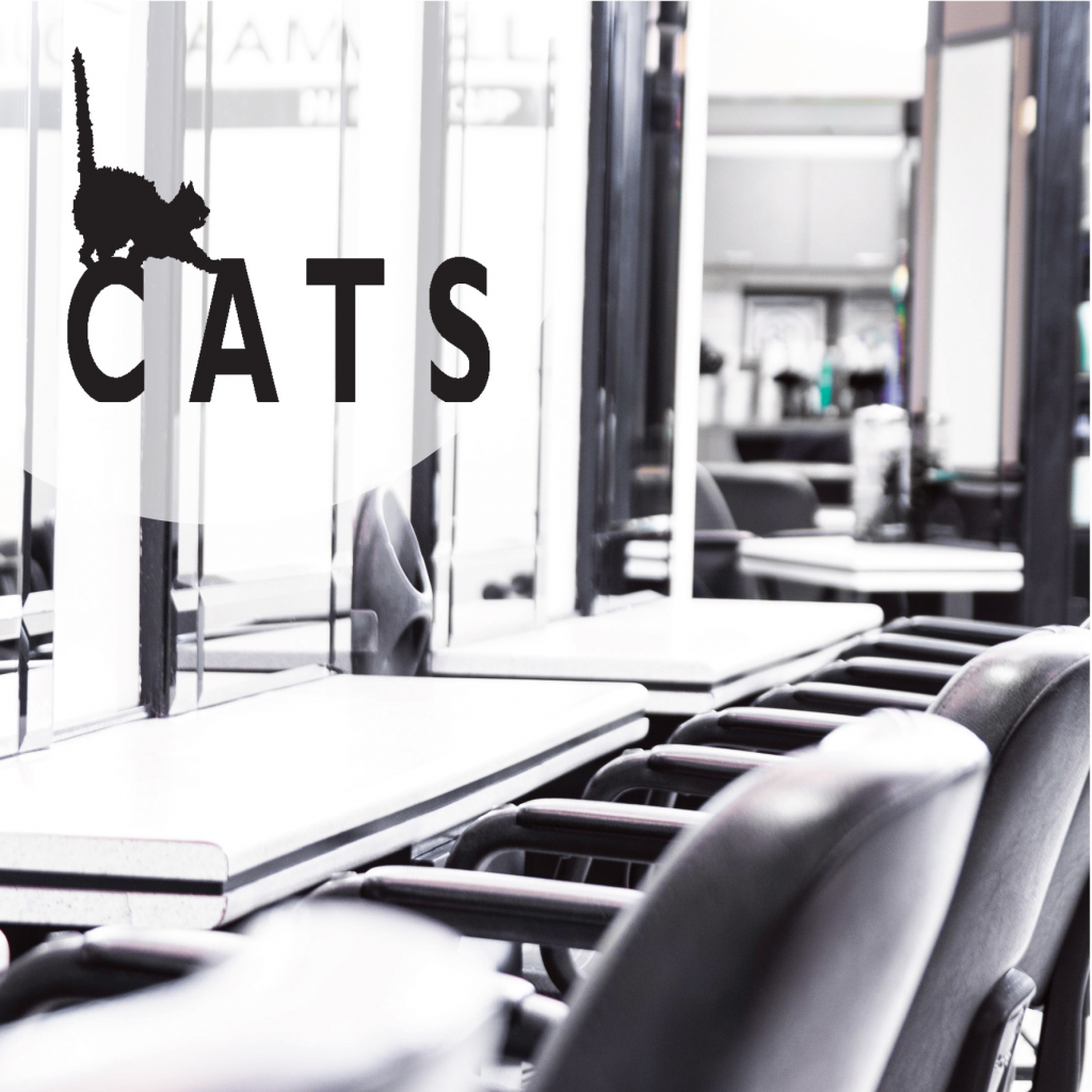 Cats Hair Studio