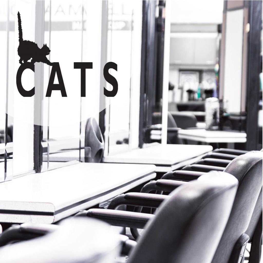 Cats Hair Studio