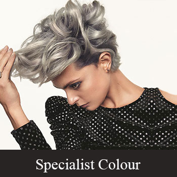 Our Colour Services